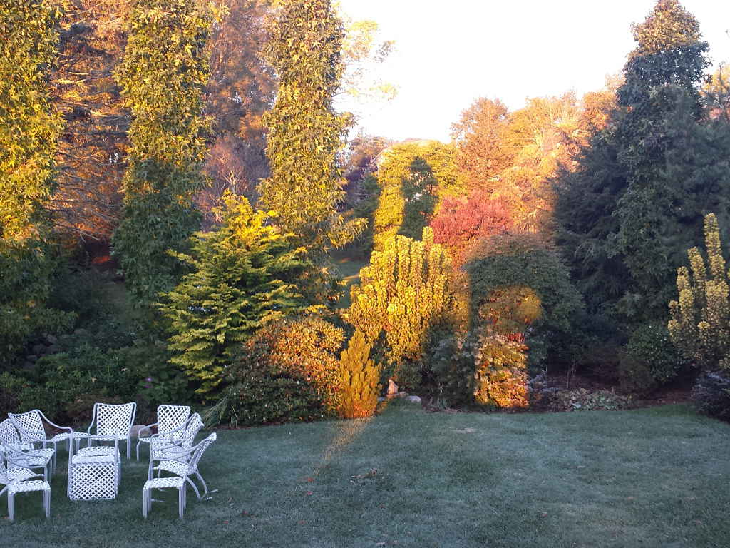 Autumn color landscape - Garden seating